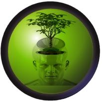 Econatics ECO wise environmental academic content