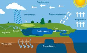 hydrologic cycle 6d
