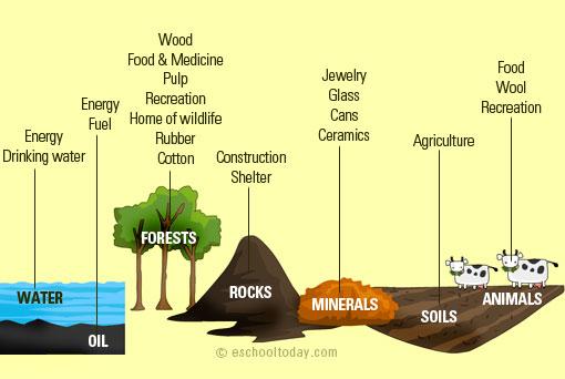 Par 6 3 natural resources econatics environmental for Natural resources soil uses